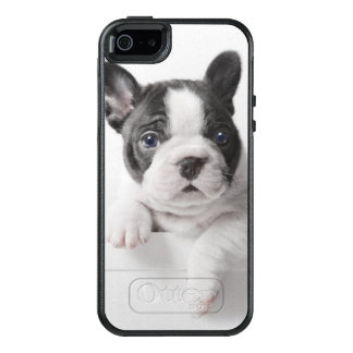 Two French Bulldog Puppies Peer Over A Wall OtterBox iPhone 5/5s/SE Case
