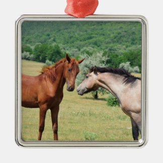 TWO FRIENDLY HORSES Silver-Colored SQUARE DECORATION