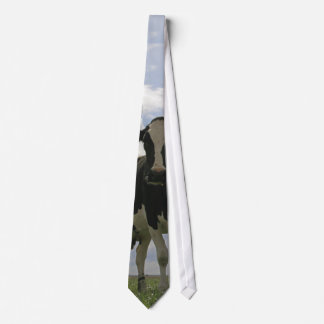 Two Friesian cows Tie