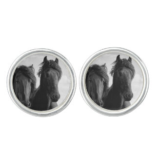 Two Friesian stallions. Cufflinks