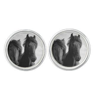 Two Friesian stallions. Cufflinks
