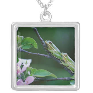 Two Frogs on Branch. Credit as: Nancy Silver Plated Necklace