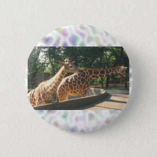 Two Giraffes Buttons