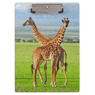 Two Giraffes Clipboards