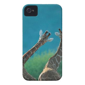 Two Giraffes (Giraffa camelopardalis) iPhone 4 Cover
