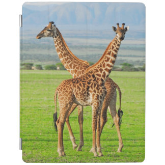 Two Giraffes iPad Cover