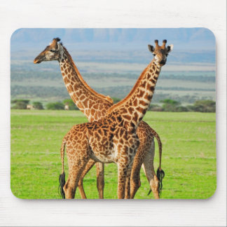 Two Giraffes Mouse Mat