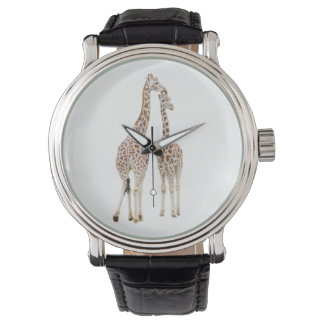 Two Giraffes Watch