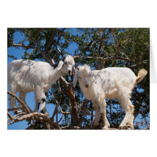 Two Goats in a Tree Card