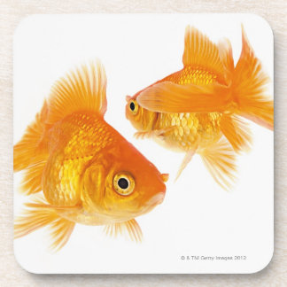 Two Goldfish Crossing Each Other Drink Coaster