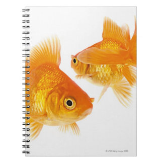 Two Goldfish Crossing Each Other Notebook