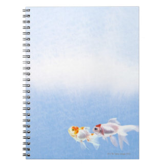 Two Goldfish Note Books