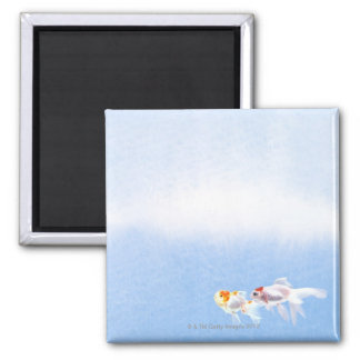 Two Goldfish Square Magnet