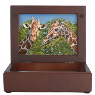 Two Gossiping Giraffes Keepsake Box