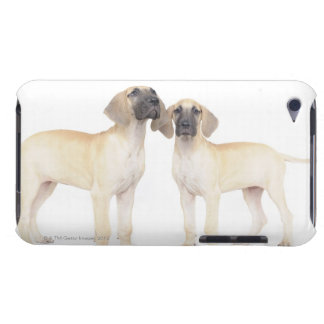 Two Great Danes Barely There iPod Cases
