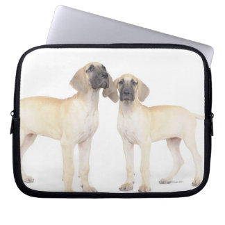 Two Great Danes Laptop Sleeve