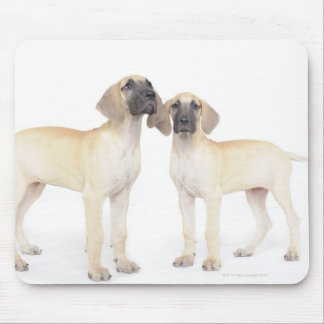 Two Great Danes Mouse Mat