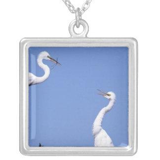 Two Great Egrets (Ardea alba) in a courtship Square Pendant Necklace
