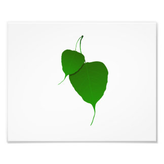 Two green leaves and stems eco image.png photo art