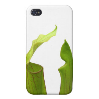 Two Green Pitcher Plants iPhone 4/4S Cases