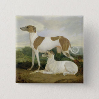 Two Greyhounds in a Landscape (oil on canvas) 15 Cm Square Badge