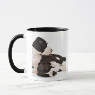 Two Harlequin Great Dane Puppies Mug
