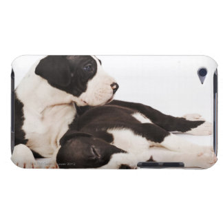 Two Harlequin Great Dane puppies on white Barely There iPod Covers
