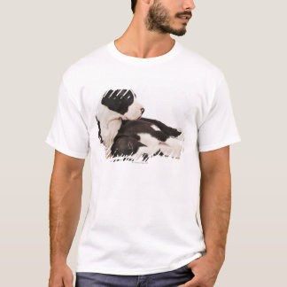 Two Harlequin Great Dane puppies on white T-Shirt