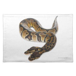 Two headed Royal Python or Ball Python - Python Placemat