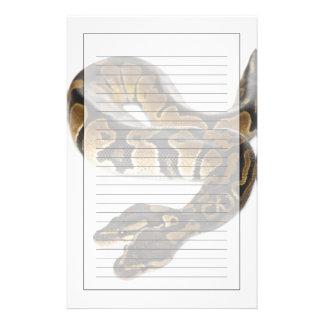 Two headed Royal Python or Ball Python - Python Stationery