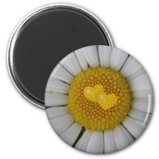 Two hearts on marguerite 6 cm round magnet