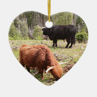 Two highland cattle, Scotland Ceramic Heart Decoration