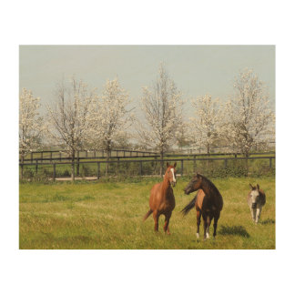 Two Horses and a Donkey Grazing in Spring Wood Wall Art