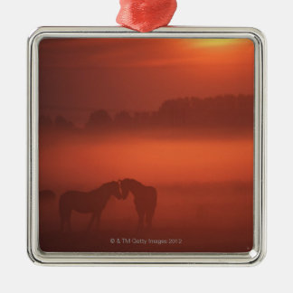 Two horses at sunset christmas ornament