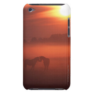 Two horses at sunset iPod Case-Mate cases
