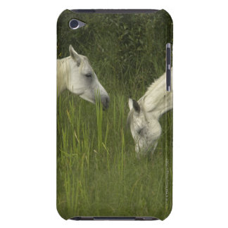 Two horses eating grass barely there iPod case
