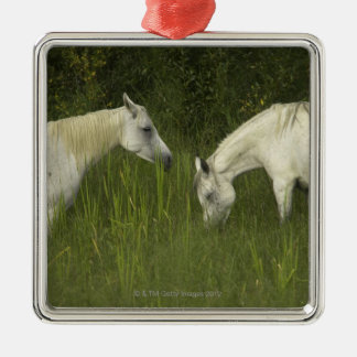Two horses eating grass christmas ornament