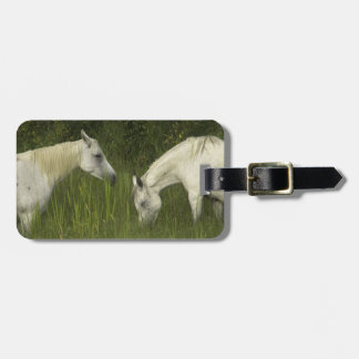 Two horses eating grass luggage tag