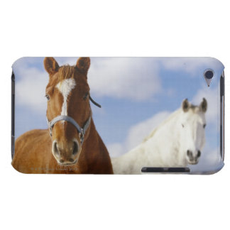 Two Horses iPod Touch Cover
