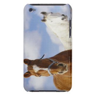 Two Horses iPod Touch Covers