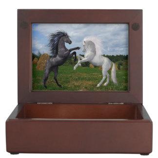 Two Horses Memory Box