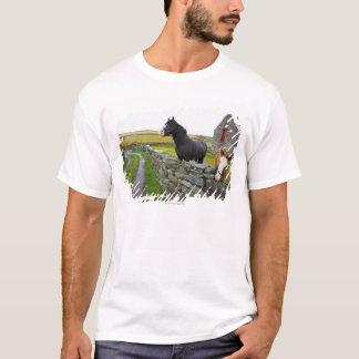 Two horses on farm in rural England T-Shirt