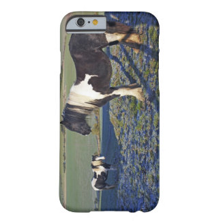 Two horses on Hackpen hill in North Wiltshire Barely There iPhone 6 Case