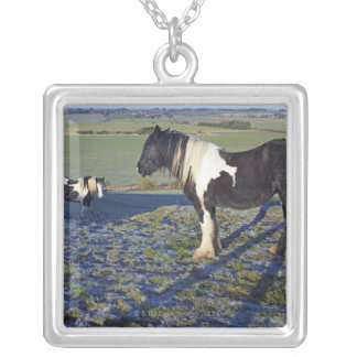 Two horses on Hackpen hill in North Wiltshire Silver Plated Necklace