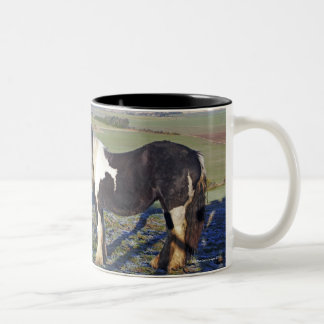 Two horses on Hackpen hill in North Wiltshire Two-Tone Coffee Mug