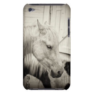two horses outside a stable- black and white barely there iPod covers