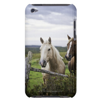 Two horses stand near fence in farm field of off barely there iPod cases