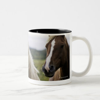 Two horses stand near fence in farm field of off Two-Tone coffee mug