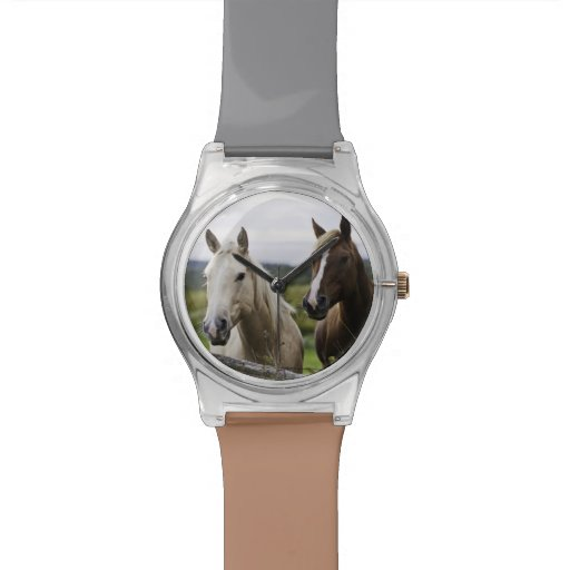 Two horses stand near fence in farm field of off wrist watches