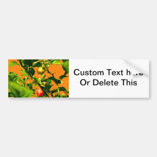 two hot peppers green foliage orange back bumper stickers